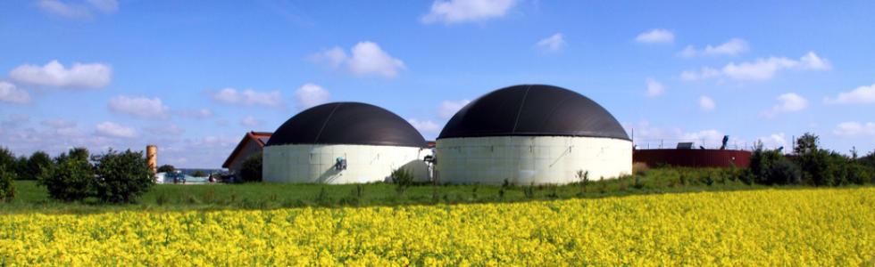 Kapitalanlage Biogas