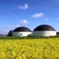 Biogas als Kapitalanlage